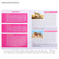 МЕМО Мир животных (50 карточек), фото 3