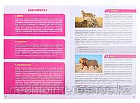 МЕМО Мир животных (50 карточек), фото 9
