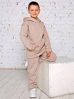 Костюм (худи, брюки) арт.1637/003