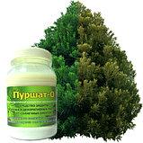 Пуршат - О средство защиты хвойных и декоративных растений от солнечных ожогов, 0,5л, фото 2