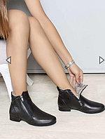 Черные женские классические сапоги 827KZA9011