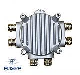 Терморегулятор РИЗУР-ТБ-ЦСУ, фото 3