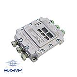Терморегулятор-измеритель цифровой взрывозащитный РИЗУР-ЦСУ-2, фото 4