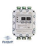 Терморегулятор-измеритель цифровой взрывозащитный РИЗУР-ЦСУ-2, фото 3
