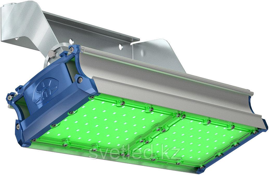 Ландшафтный светильник TL-PROM SM 100 FL D Green