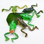 Лягушка с двойником 6см, набор 5шт, фото 2