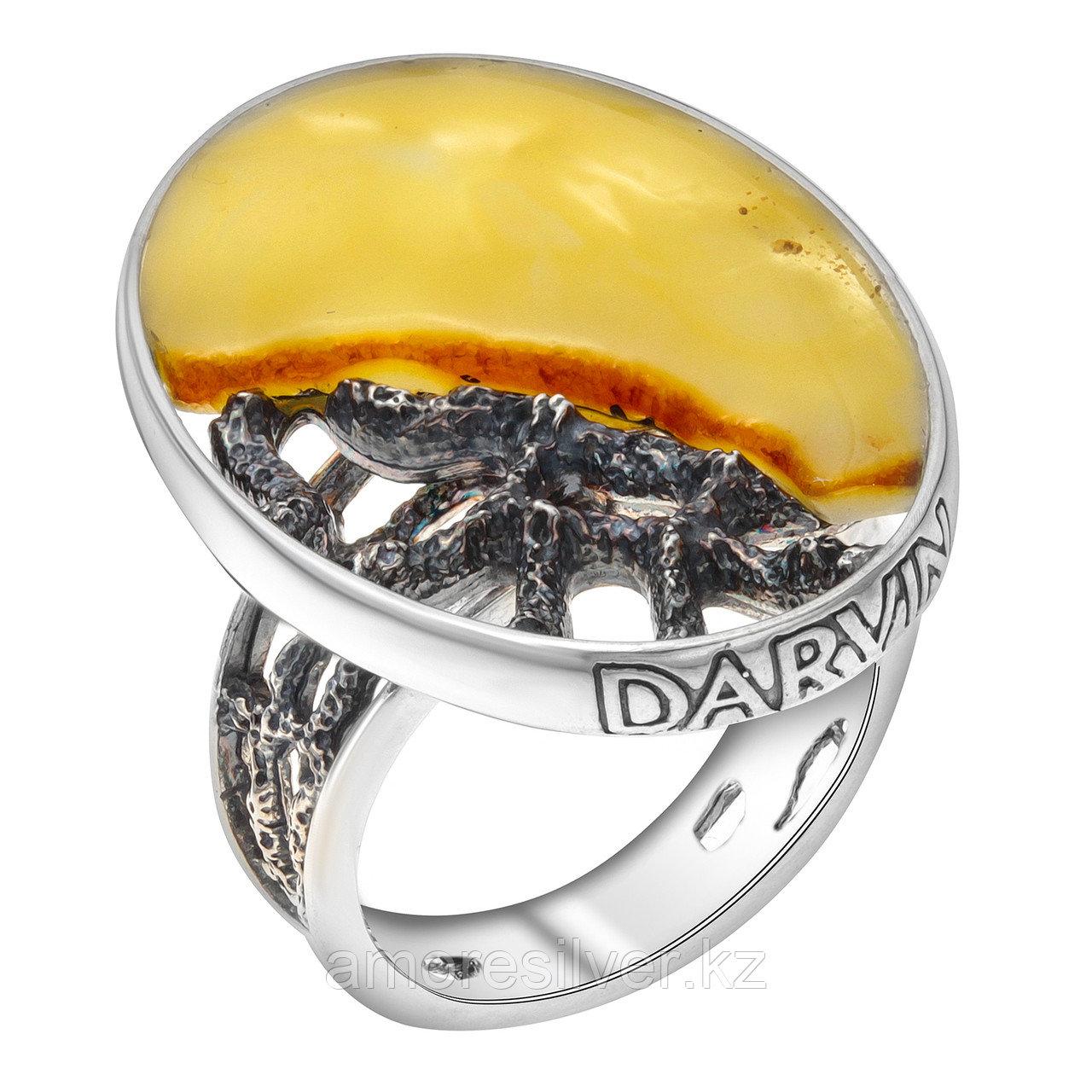 Кольцо Darvin из черненного серебра, янтарь белый, необычное 520034003aa
