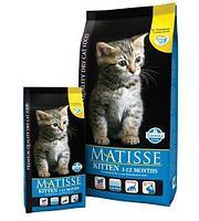 Фармина Matisse для котят 1 - 12 месяцев 10 кг