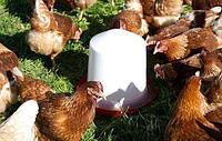 Поилка для цыплят и кур 10л 70210 А/М