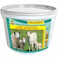 Фелуцен - БРИКЕТ энергетический для овец,коз 4 кг ведро