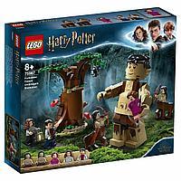LEGO Harry Potter: Грохх и Долорес Амбридж 75967