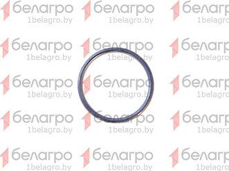 035-040-30-2-2 Кольцо уплотнительное, Беларусь