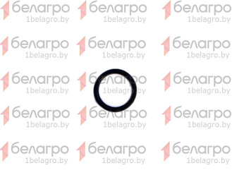 020-025-30-2-2 Кольцо уплотнительное, Беларусь