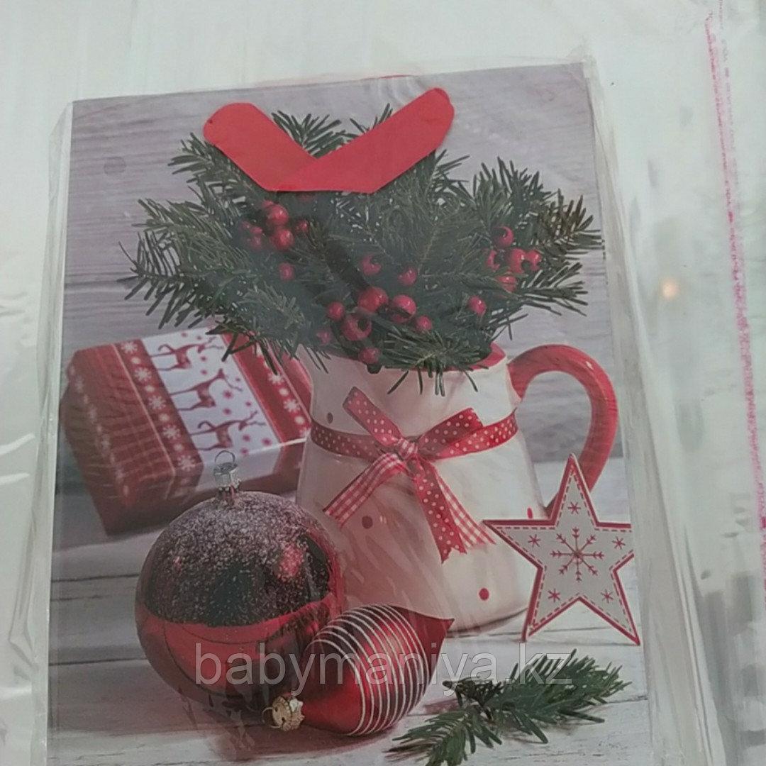 Пакет подарочный бумажный Новогодний С Рождеством 18*23 см