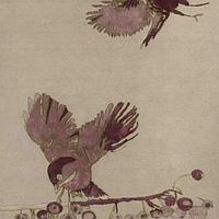 Ковры Jacaranda Carpets Гималайские ковры JC6851 Birds