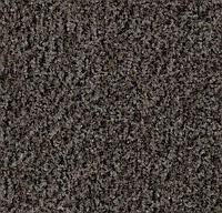 Ворсовые грязезащитные покрытия Forbo Coral Brush 5714