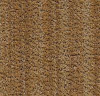 Ворсовые грязезащитные покрытия Forbo Coral Brush 5754