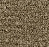 Ворсовые грязезащитные покрытия Forbo Coral Classic 4774