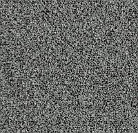 Ворсовые грязезащитные покрытия Forbo Coral Go 2210