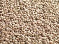 Ковровые покрытия Jacaranda Carpets Mayfield Clay