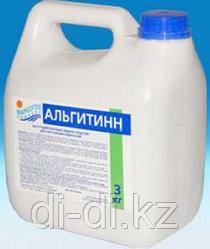 Альгитинн 3,0л канистра, жидк. ср-во для борьбы с водорослями