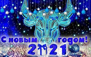 С наступающим Новым 2021 годом!