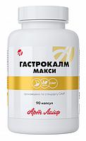Гастрокалм Макси - комфортное пищеварение, Арт Лайф, 90 капсул