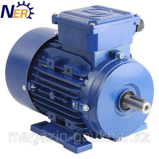 Электрический двигатель 4Р