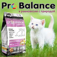 Пробаланс Сухой корм для котят с цыпленком