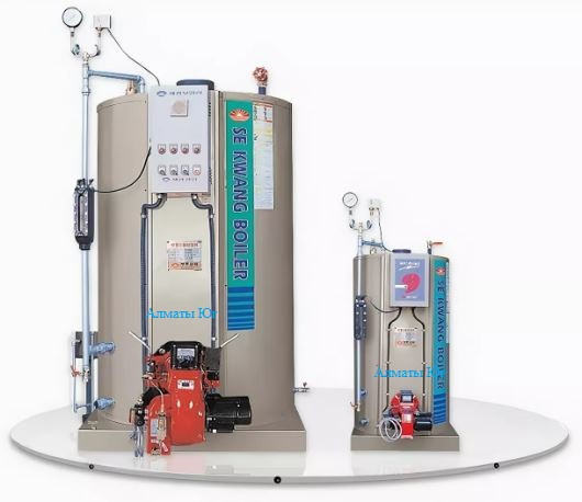 Паровой газовый котел Sekwang Boiler SEK 50