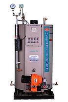 Паровой газовый котел Sekwang Boiler SEK 300, фото 3