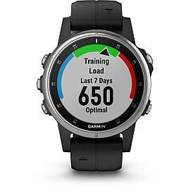 Смарт-часы Garmin Fenix 5S Plus черный/серебряный