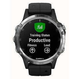 Смарт-часы Garmin Fenix 5 Plus черный/серебряный
