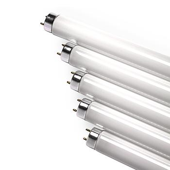 Лампы T8 (30 см)
