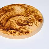 Доска из массива кедра «Бельчонок», круглая, 18 × 18 см, фото 4