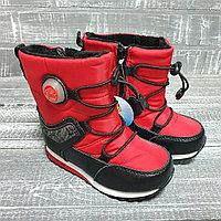 Аляски (овична, красные)
