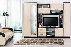 Шкаф для одежды 2Д как часть комплекта Гостиная 3, Дуб Млечный, СВ Мебель (Россия), фото 2