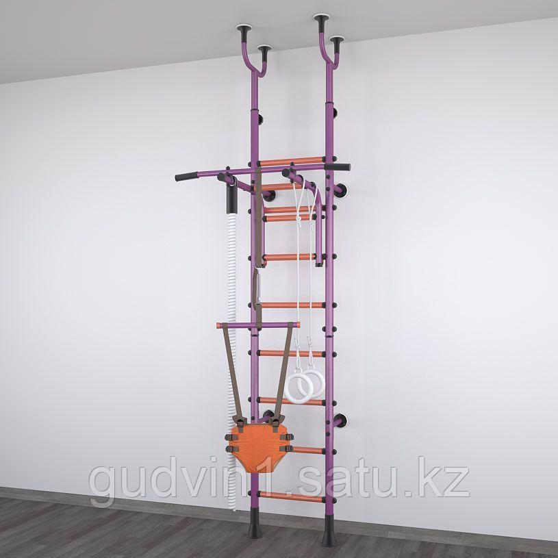 Детский спортивный комплекс Polini Sport Active, фиолетовый 01-31278