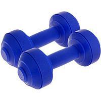 Гантели пластиковые Европодвес 2х1,5 кг Blue