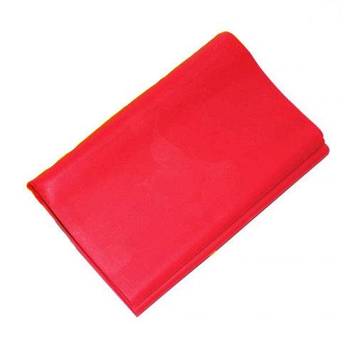 Лента гимнастическая Zez Sport 1515-65 Red
