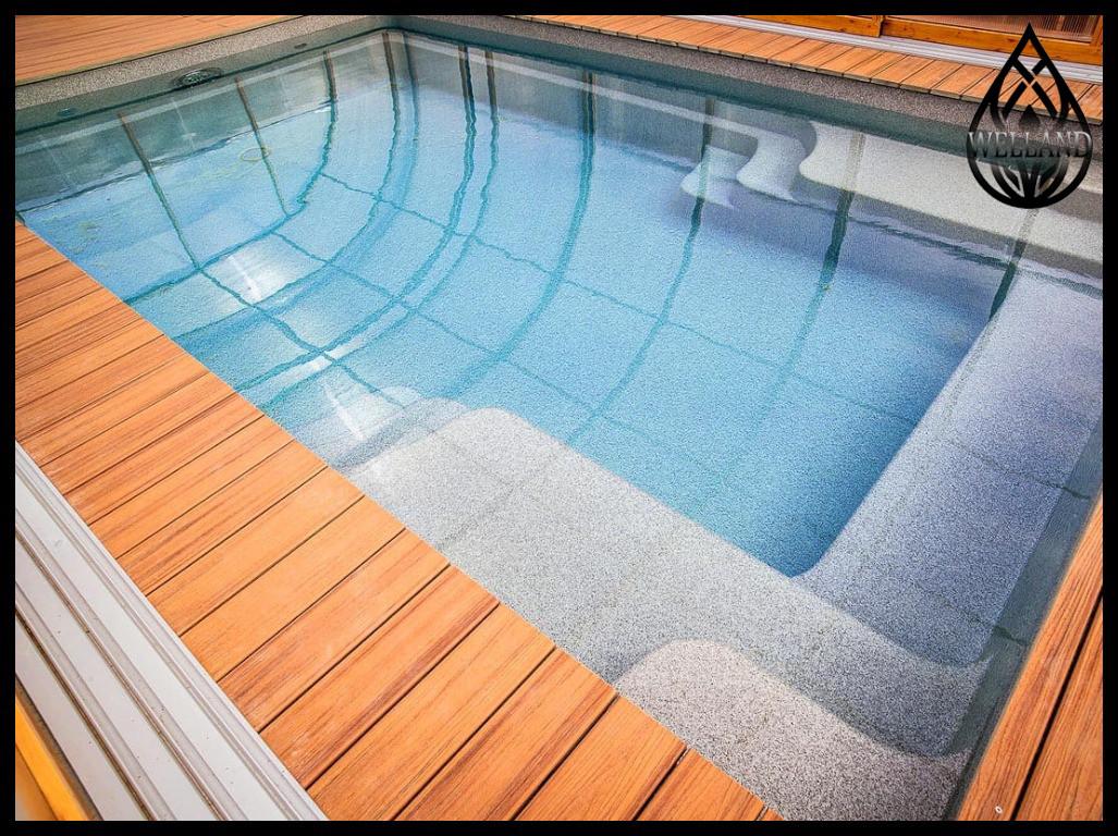 Дизайн и визуализация скиммерных и переливных бассейнов