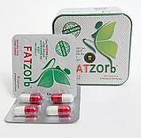 Фатзорб (FATZOrb) - капсулы для похудения, фото 3