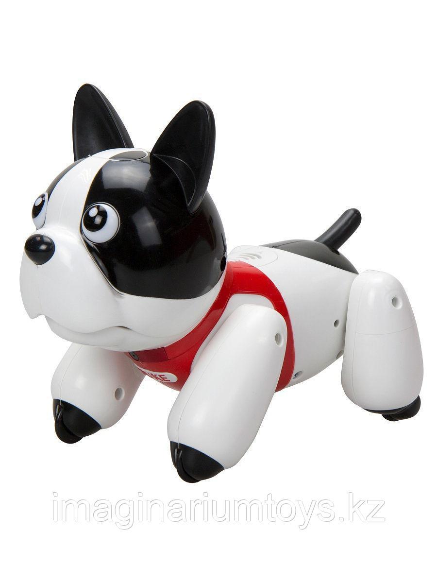 Silverlit собака робот Дюк YCOO