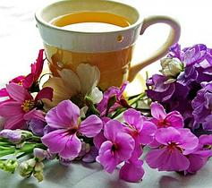 Целебный и оздоровительный чай