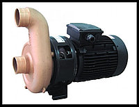 Насос бронзовый Pahlen Jet Swim 2000 для противотока, 4,0 кВт, 78  м³/ч, фото 1