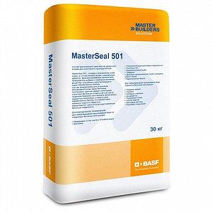 Сухая смесь MasterSeal 501