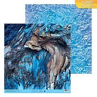 Бумага для скрапбукинга «Кора», 30.5 × 30.5 см, 180 г/м
