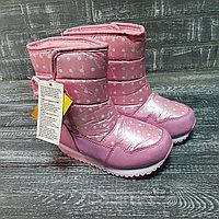 Аляски розовые в горошек