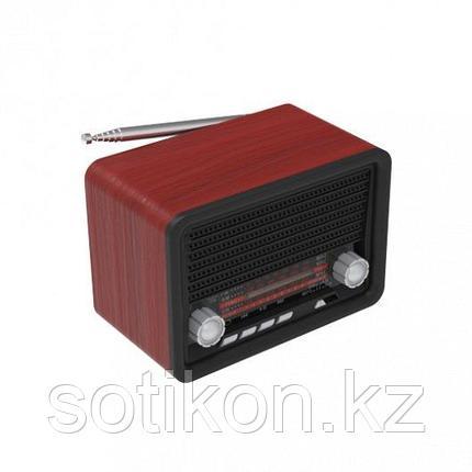 Радиоприемник портативный Ritmix RPR-030 BLACK, фото 2