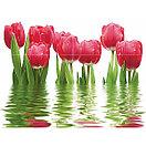 Кафель | Плитка настенная 25х50 Фреш | Fresh бордовый, фото 4